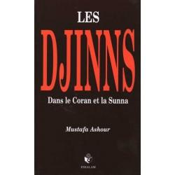 Les djinns dans le coran et la sunna
