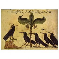 Kalîla wa Dimna de Bidpai : Le roi des corbeaux tenant conseil