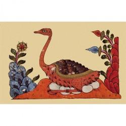 Le livre des animaux (Kitâb al-Hayawân) d'al-Jâhiz : Une autruche couvant