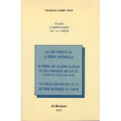 Études complémentaires sur le califat