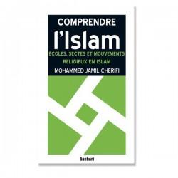 Écoles, sectes et mouvements religieux en islam